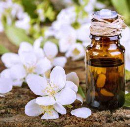 Olio essenziale di Gelsomino, proprietà e utilizzi