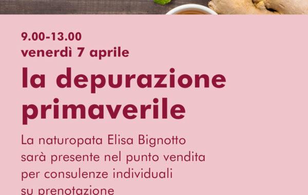 Consulenze al NaturaSì Verona